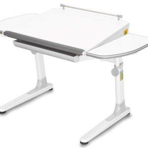 augantis-stalas-Mayer