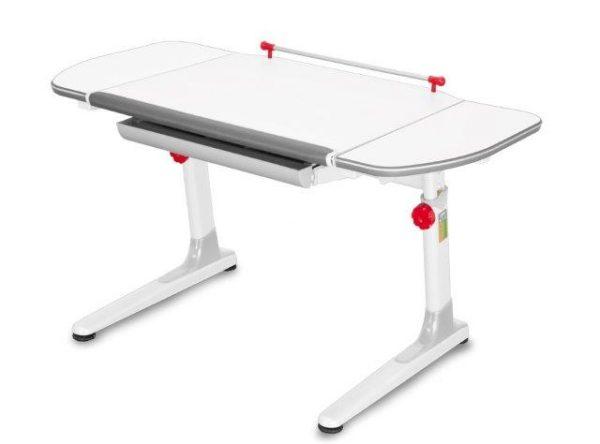 augantys-stalai-vaikų-kambariui