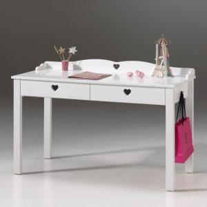 Rašomasis-stalas-provanso-stiliaus-amori