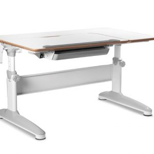 augantis-stalas-expert